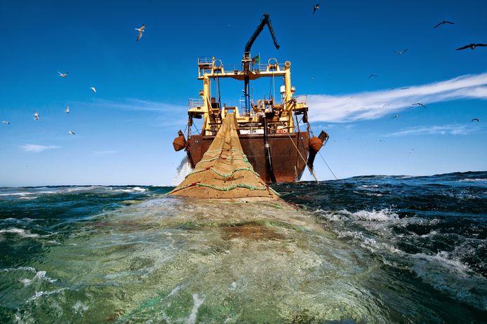 De commerciële visvangst - hier met sleepnetten - heeft enorme gevolgen voor het zeeleven.