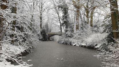 Reeks 4. Laatste kiekjes in fotografie-uitdaging 'wie maakt de mooiste sneeuwfoto's in de regio?'