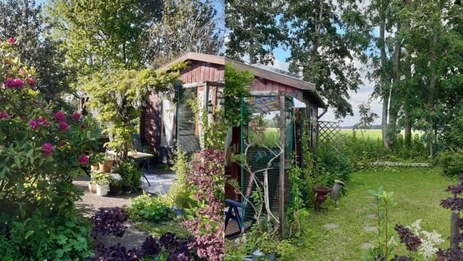 Ellen is geen doorsnee tuinierder: 'Ik kijk vooral hoe de natuur haar eigen gang gaat'