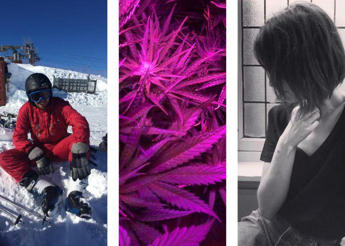 Van links naar rechts: Wald, de plant van Louise, Sara.