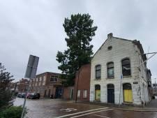 Alle bezwaren afgewezen voor kap 100 jaar oude moerascipres en bomen langs Wantij