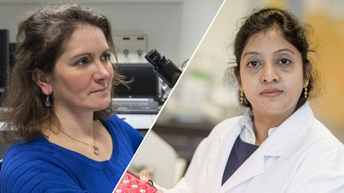 Onderzoekers Séverine Le Gac en Ruchi Bansal.