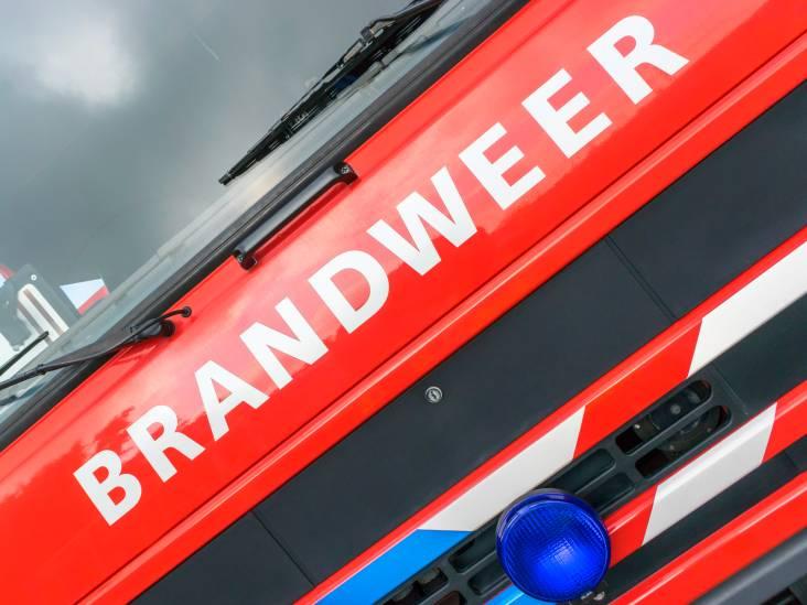 Grote uitslaande brand in twee-onder-een-kapwoning in Reusel: 'Mogelijk honden aanwezig'