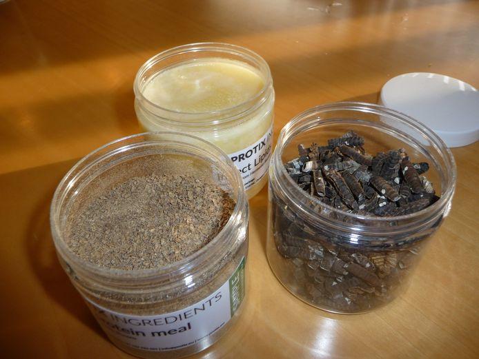 Eiwitpoeder, vet en huidjes (v.l.n.r.), uit vliegenlarven gewonnen producten van Protix.