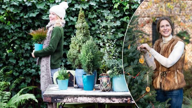 Tijd om je kerstboom af te breken? Onze tuinexperte legt uit hoe je hem het best recycleert