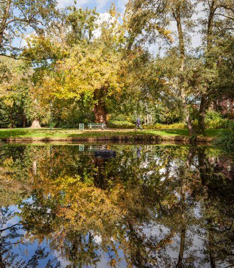 Na klachten zwijgt fontein in Waalwijks park: 'Wij werden gek van dat kletterende water'