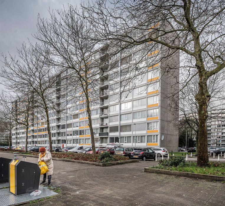 Deze flats in Overvecht-Noord zouden ook gasloos moeten worden. Beeld Harry Cock / de Volkskrant