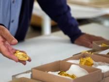 Deen vindt 22 gouden objecten uit tijd voor Vikingen: 'Leek op deksel van blikje zure haring'