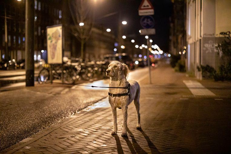 Blondie, Frederik Hendrikstraat. Beeld Mascha Jansen