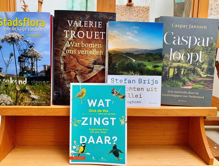 De vijf genomineerde boeken voor de Jan Wolkersprijs 2020, bijeengezet in het atelier van Wolkers op Texel. Beeld Geen credit nodig