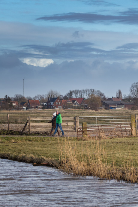 Reddingsplan voor weidevogels in Oudeland van Strijen