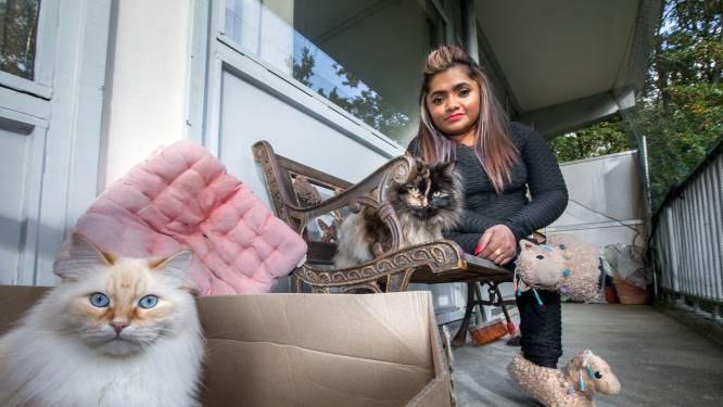 Jeanette heeft een handicap en kan kattenbak niet verschonen: 'Ik heb echt hulp nodig'