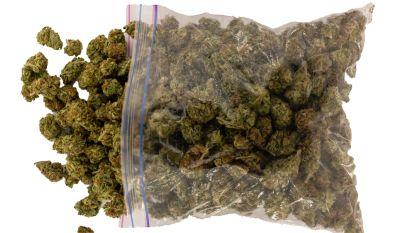 15 maanden cel nadat politie Jumbo-zak met 300 gram cannabis vindt tussen rij bomen