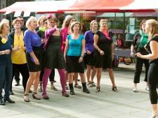 Samen zingen mag nog steeds niet, gaan Utrechtse koren de coronacrisis overleven?