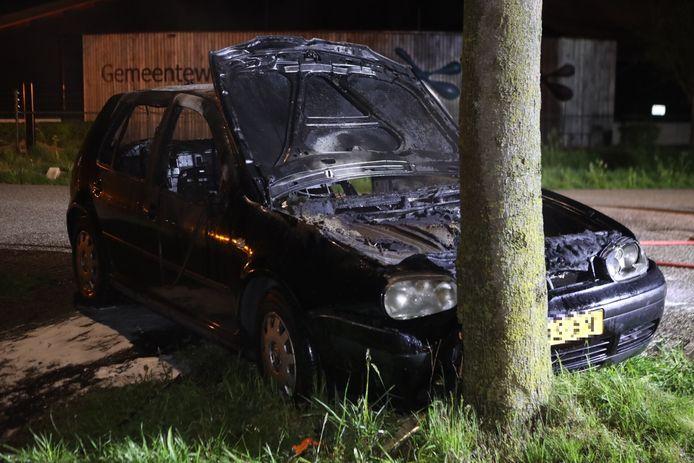 De auto brandde uit na de botsing tegen een boom.