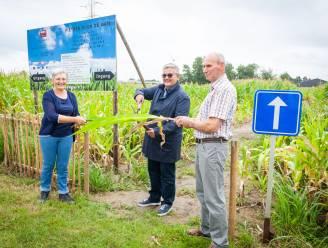 22ste editie van Volle Bak Herk verrast met attractie 'Fietsen door de maïs'
