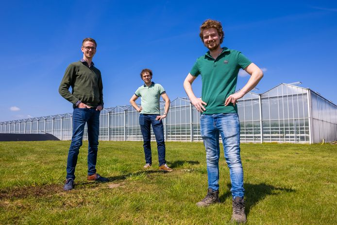 Leendert van Tuijl, Koen Kreling en Jelle Pippel (van links naar rechts).