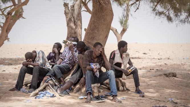 Tientallen migranten achtergelaten en beroofd in Sahara