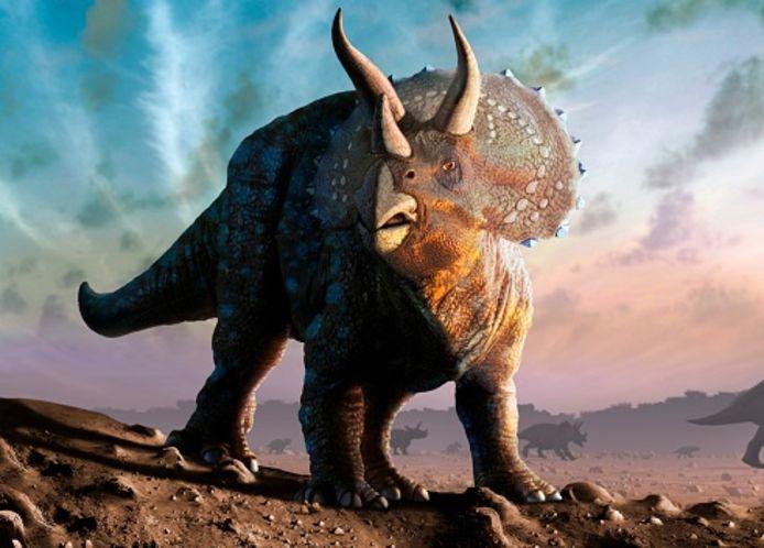 Vielleicht sah Triceratops so aus.