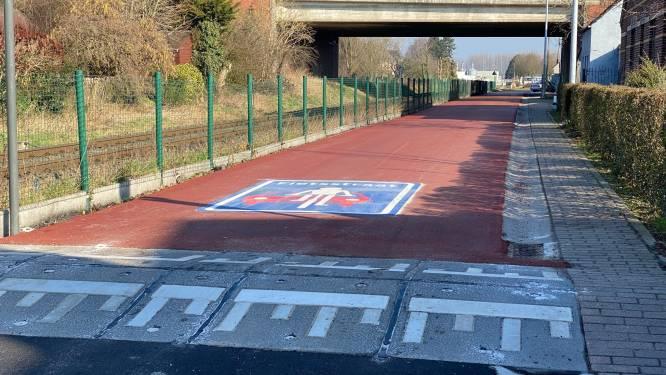 """Fietsstraat ontoegankelijk voor wagens en fietstandems: """"Verkeersdrempels zijn niet te doen, ze moeten weg"""""""