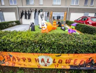 """Na paashazen en kerstmannen versiert Geert (58) z'n voortuin nu ook met pompoenen en heksen: """"Het is een hobby geworden"""""""