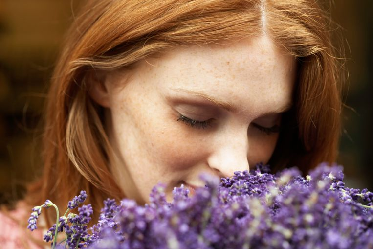De geur van lavendel is rustgevend Beeld Getty Images