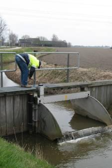 Grondwaterstand West-Brabant is weer op peil na hete, droge zomer (maar dat kan zomaar weer veranderen)