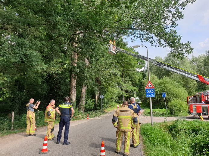 De brandweer in actie aan de Torenlaan in Hengelo waar een grote tak van en boom was gebroken.