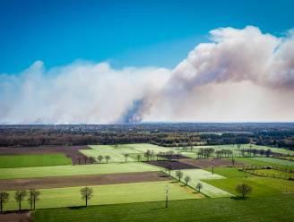 """Natuurpunt wil grondig natuurherstelbeleid na verwoestende brand in Brecht: """"Geen schietoefeningen van april tot september"""""""
