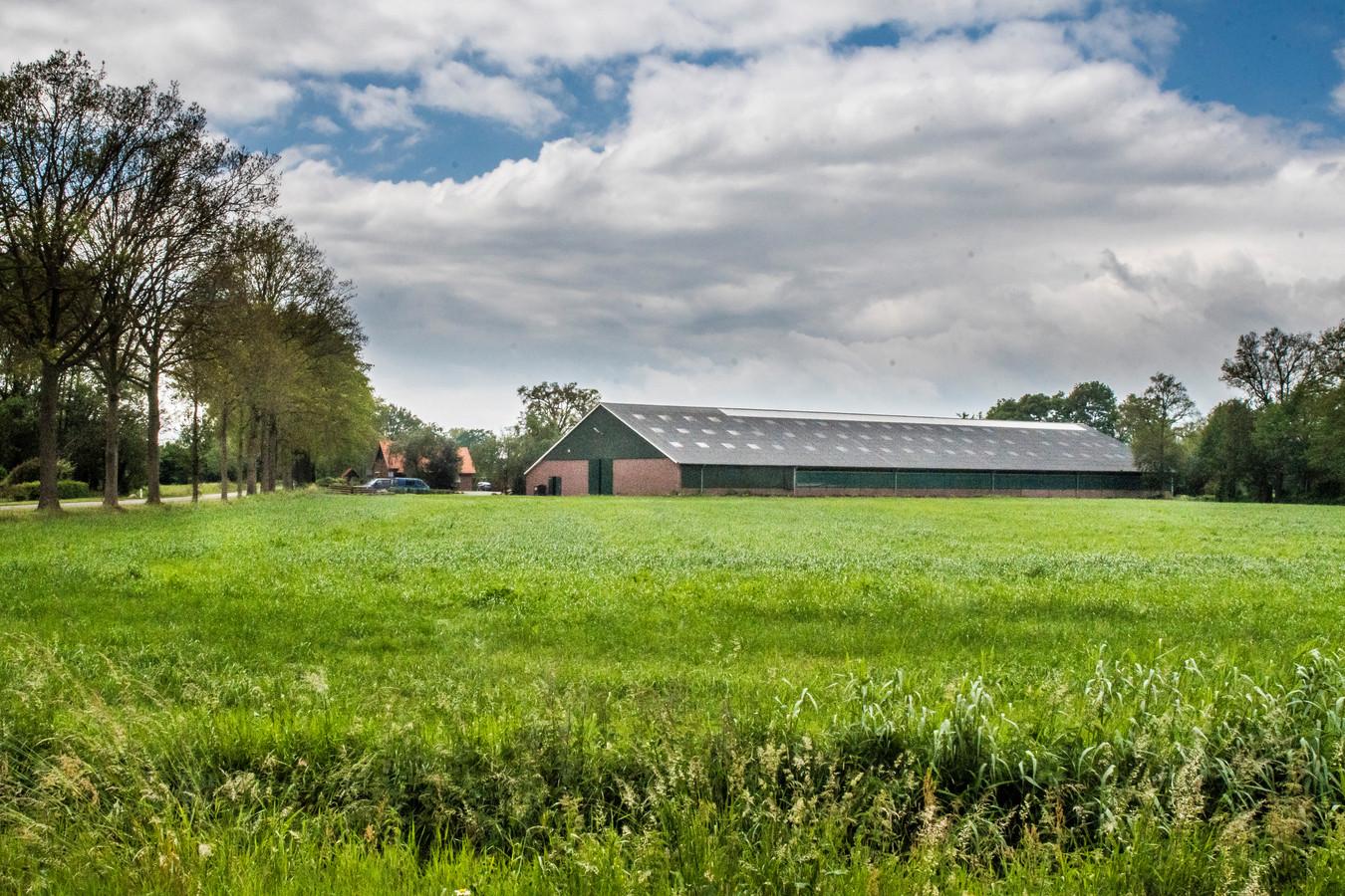 De maatschap Busschers-Janssen aan de Beldsweg in Ambt Delden wil de geitenhouderij uitbreiden tot een megastal voor ruim 5400 dieren. Daar steekt de rechtbank een stokje voor door bezwaren van drie omwonenden gegrond te verklaren.