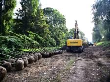 Ruim zestig nieuwe bomen voor groene strook rondom Rozenburg
