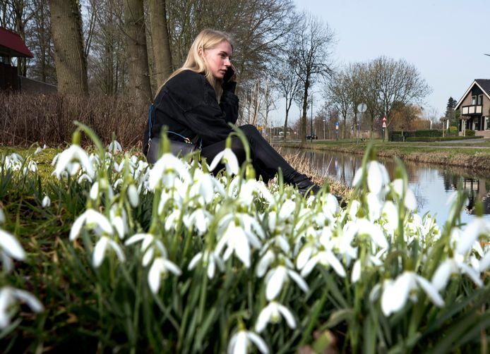 Lentezonnetje en sneeuwklokjes langs de Oudelandseweg in Woerden.