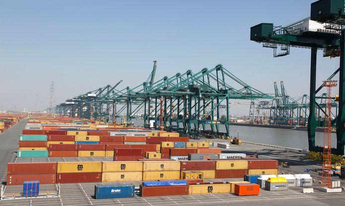 Laden en lossen van containers bij MSC-PSA aan het Deurganckdok