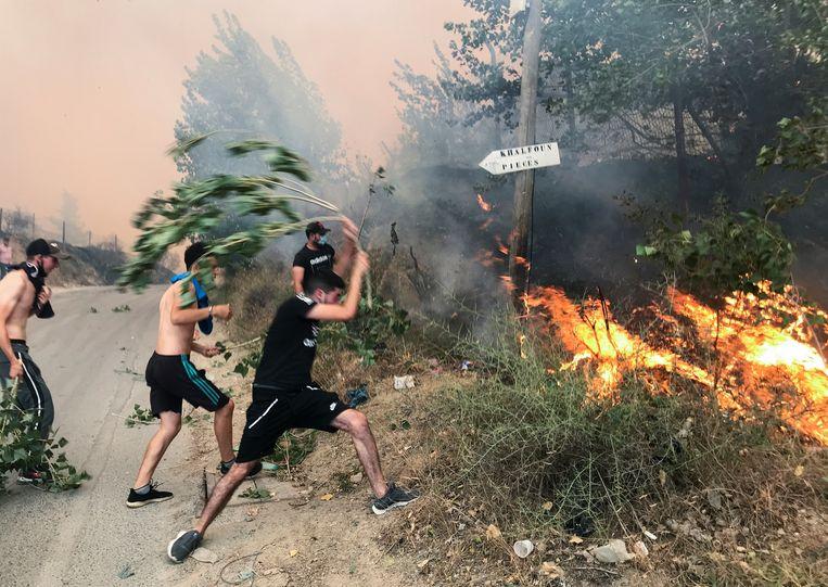Mensen proberen de branden ten oosten van Algiers uit te slaan met takken. Beeld Reuters