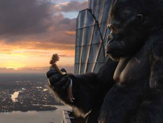 Echte 'King Kong' was zo'n kolos dat zijn gigantische postuur zijn eigen ondergang betekende