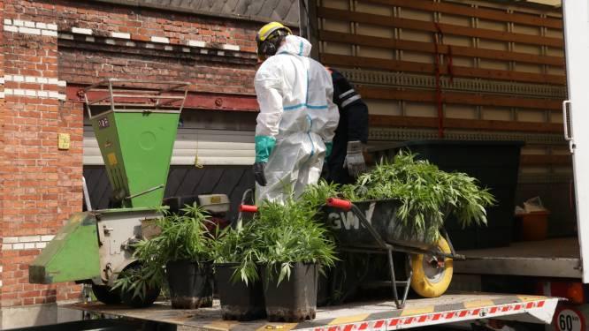 Duo riskeert celstraf voor cannabisplantage in garage in Izegem, Nederlander blijft buiten schot