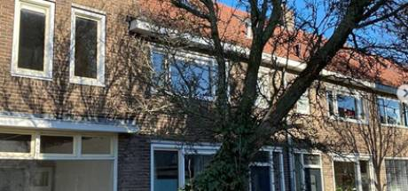 Vrachtauto rijdt tegen boom in Utrecht, zorgt voor gevaarlijke situatie