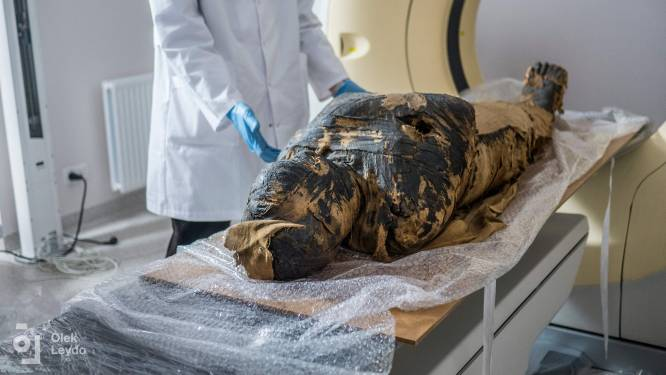 Poolse wetenschappers ontdekken eerste zwangere mummie