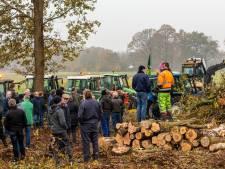 Bomen in Stelkampsveld worden gekapt zodat natuur zich kan herstellen