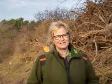 De bospest te lijf in Kop van Schouwen: 'Dit heeft alleen maar zin als je ze weg blijft pesten'