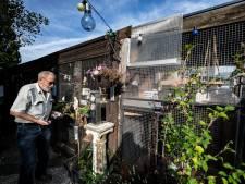 Bewoners in actie tegen sloop van complete Ericastraat in Malden: 'Hechte gemeenschap valt zo uit elkaar'