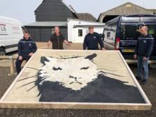 Kunstwerk 'White House Rat' van Banksy veilig aangekomen in Staphorst: Wie biedt?