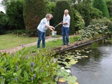Juist vanwege deze tuin kochten Frans en Dina hun huis in Oud Gastel