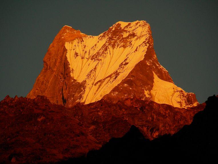 De Machapuchare of Fishtail bij zonsondergang, een heilige berg voor de Nepalezen die niet  beklommen mag worden. Maar je loopt wel in zijn schaduw. Beeld Maarten Rabaey
