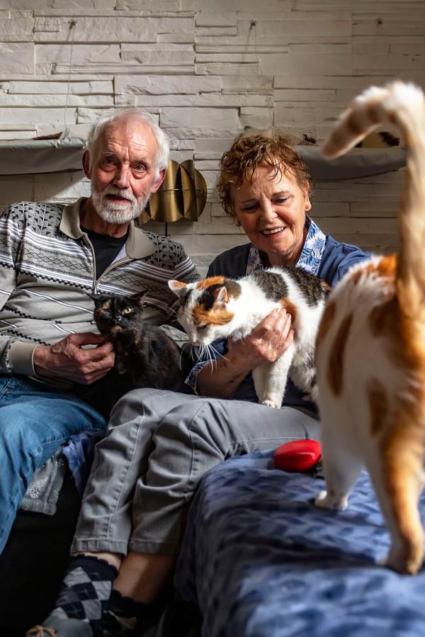 Ineke en GertJan van den Eijkel hebben samen de stichting Dintelkat opgericht. Zij vangen bejaarde katten op in & om hun huis.