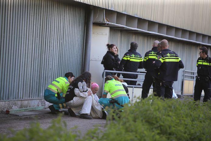 Activist onwel in bezette stal in Boxtel.