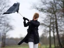 Une tempête souffle sur la Belgique ce mardi