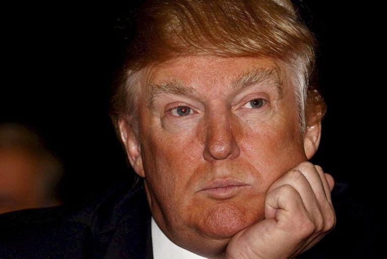 Donald Trump (foto) had zich alleen met zijn naam en verkooporganisatie aan het project verbonden. Foto EPA/Derek Ironside Beeld