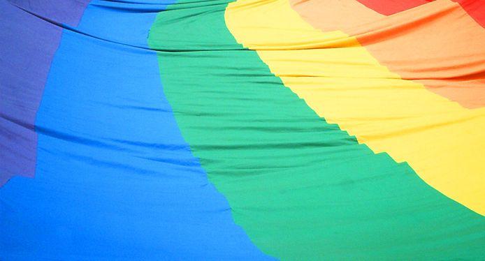 Regenboogvlag. Foto ter illustratie.