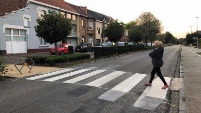 Leerlingen veiliger op pad dankzij 3D-zebrapad